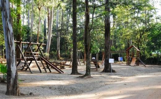 foto Parque Natural Chico Mendes