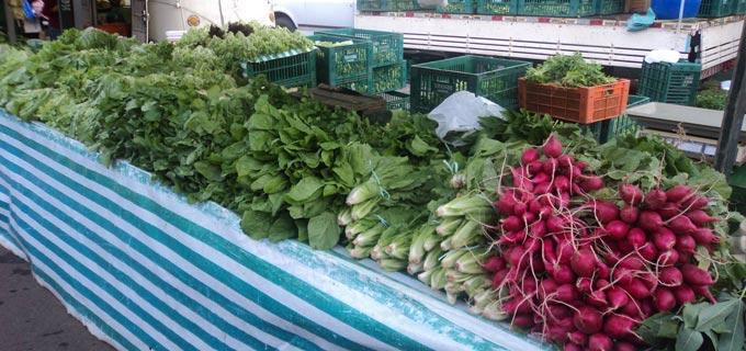 verduras ifanger
