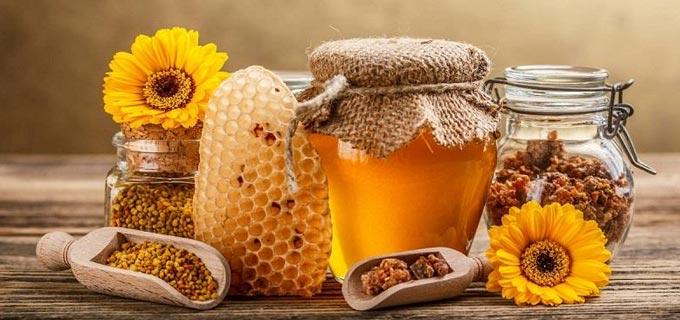 apiario apiclepardi