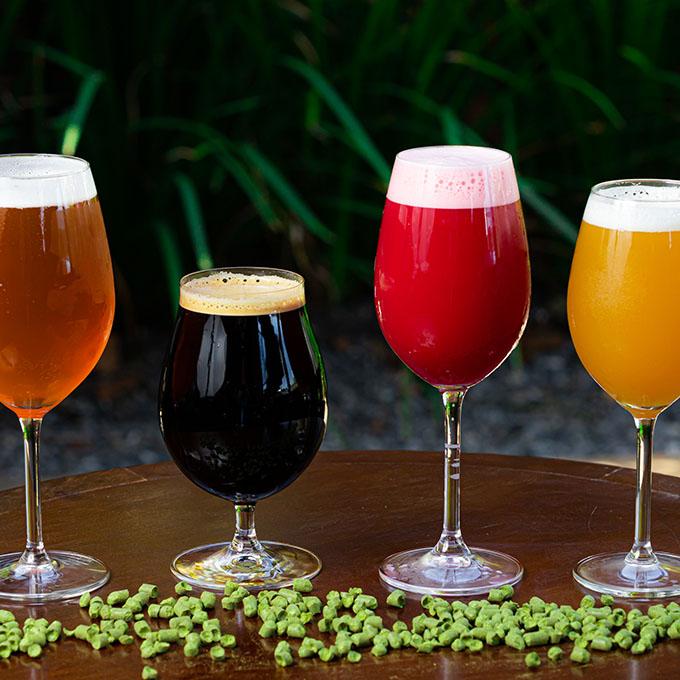 cervejaria hoffen 1