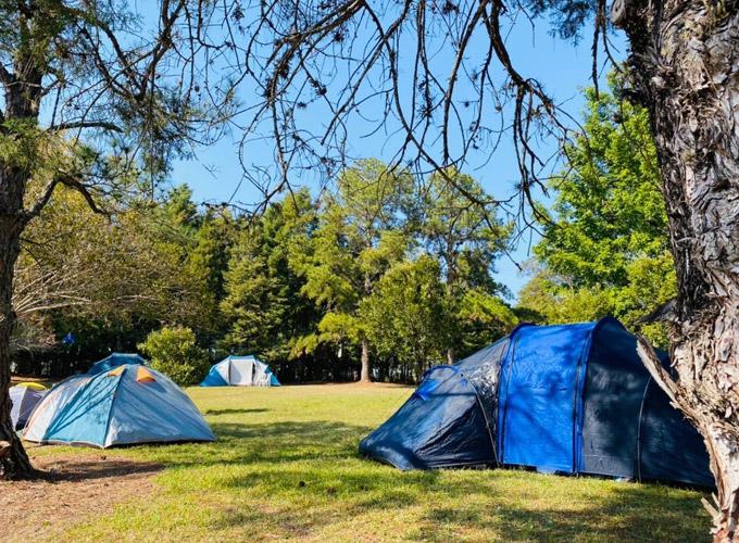 acampamento vips